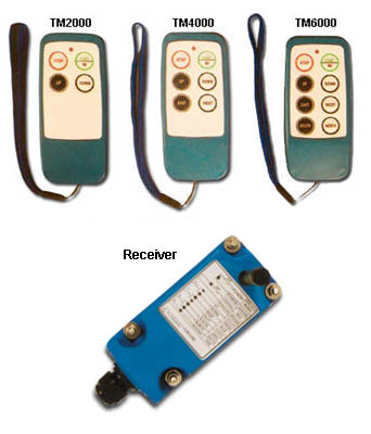 Economy Electrical Controllers For Hoists And Conveyors