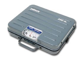 Heavy Duty Utility Scale