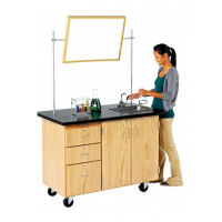 mobile laboratory desk