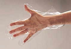 Clear Polyethylene Food Handling Gloves